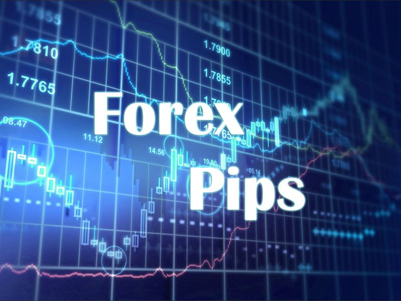 Forex broker pips hunt